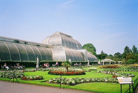 Tropical Green House, Kew Garden