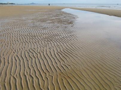 HH_low_tide2