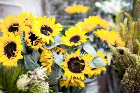 flower3-660x440